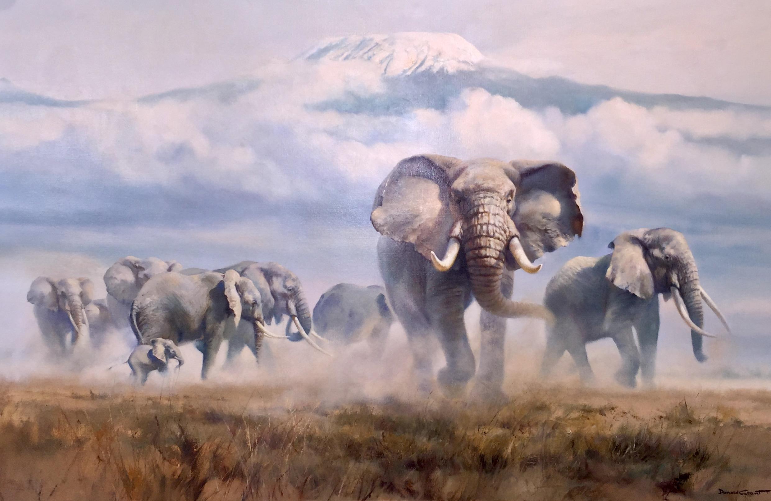 Elephants on the plain of snow capped Mount Kilimajaro