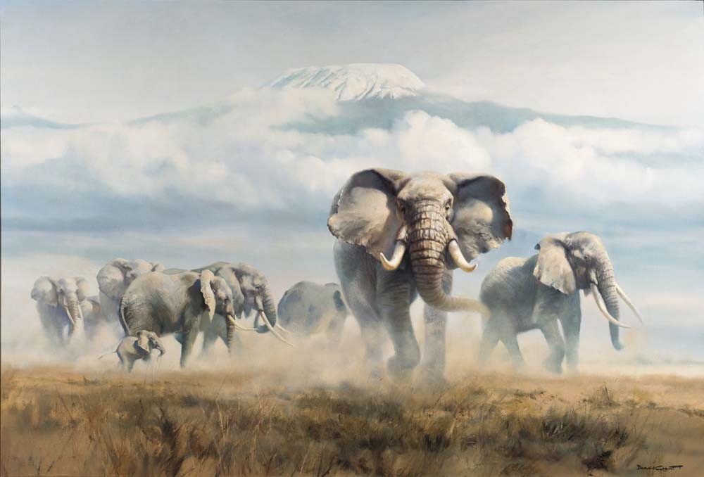 Elephants on the plains of Mount Kilimanjaro, Tanzania