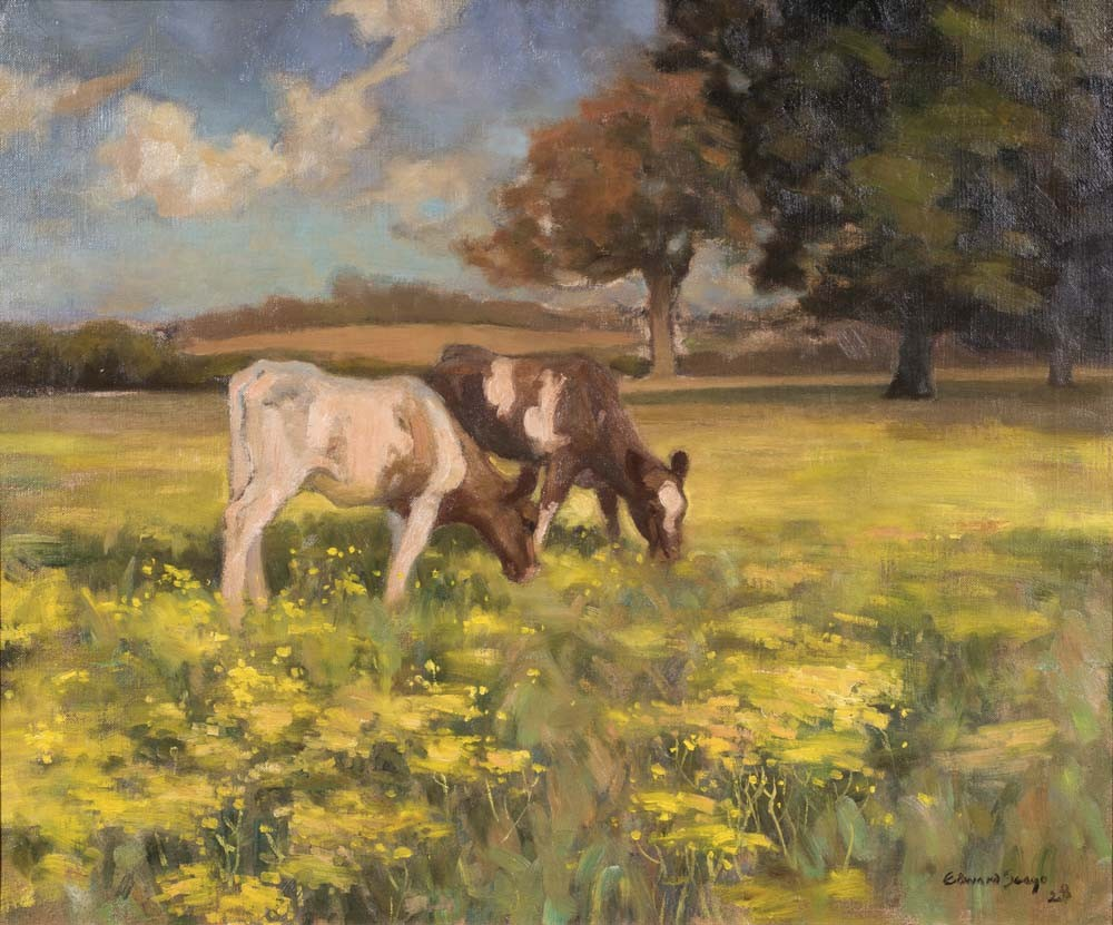 Cows in a Norfolk Landscape