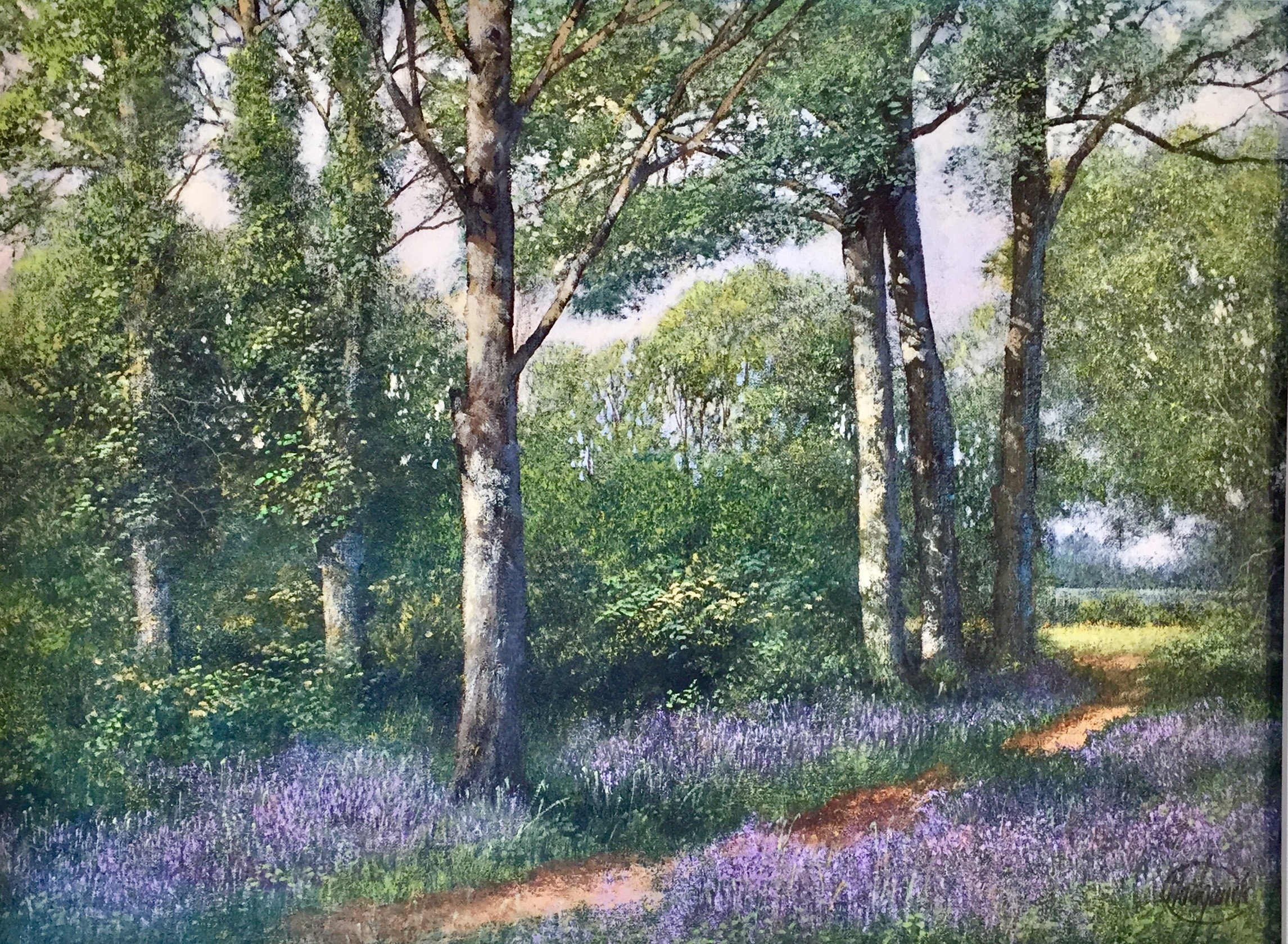 Bluebell Woods - SOLD