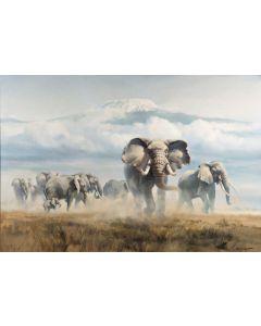 Elephants on the plains of Mount Kilimanjaro, Tanzania