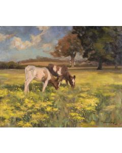 Cows in a Norfolk Landscape - SOLD